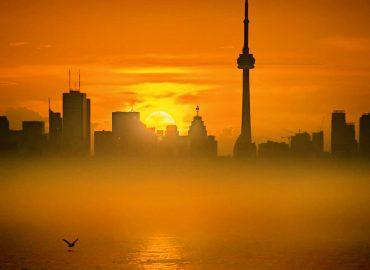 Toronto Dui Lawyers, Cheap DUI lawyers Toronto